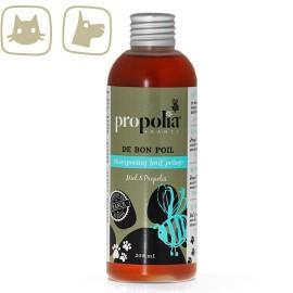 Productos naturales para animales